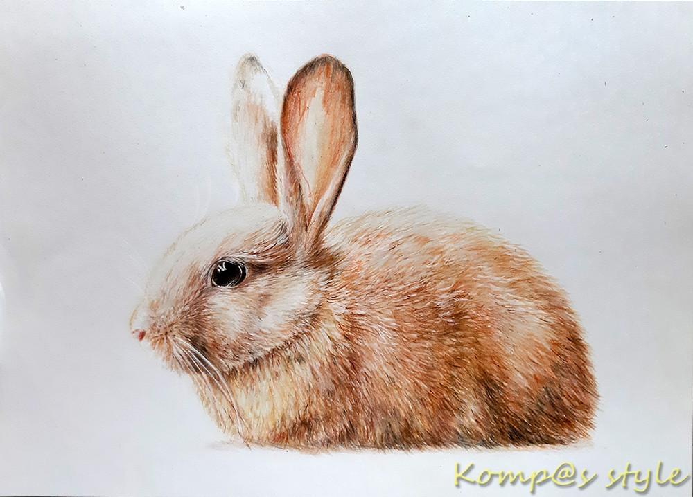Как нарисовать пушистого кролика