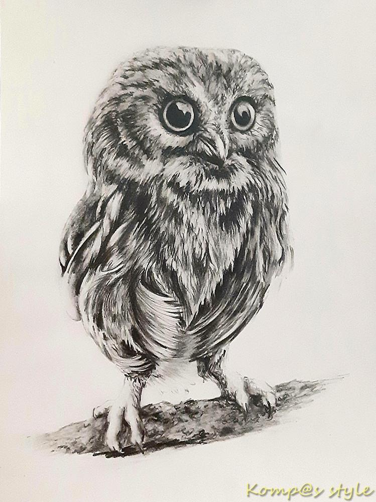 Как нарисовать совенка карандашом